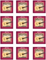 Martin M120 Silver Plated Nylon Guitar Strings (High Tension 12-Pack)