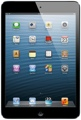 Apple iPad mini (Wi-Fi + 4G, Verizon, 16GB Black)