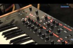 Dave Smith Instruments Prophet '12 Synthesizer Demo...