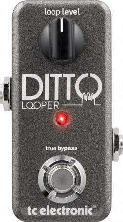 DittoLooper
