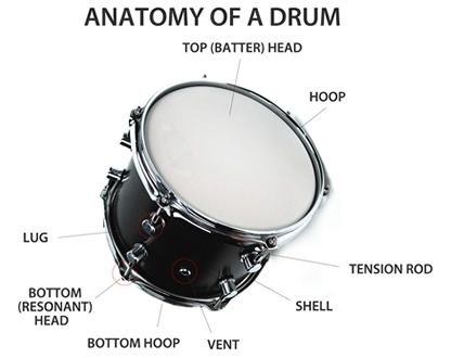 anatomy_of_a_drum