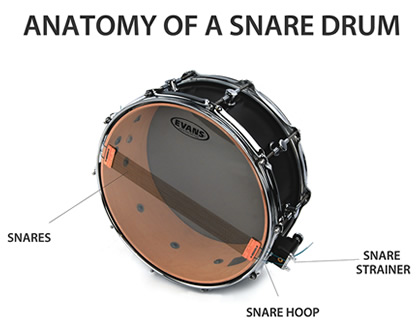 anatomy_of_a_snare