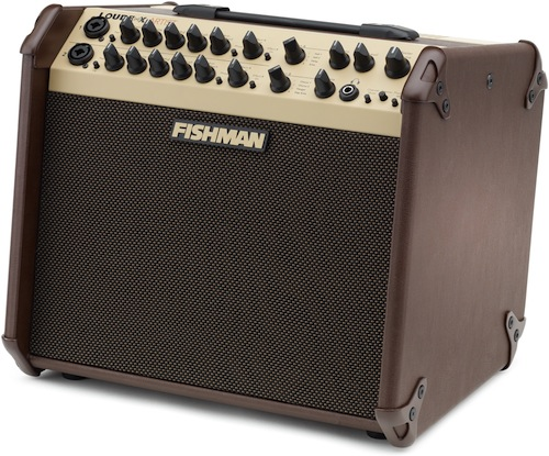 Acoustic Guitar Amp Buying Guide Sweetwater
