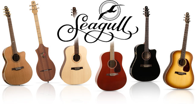 Seagull Guitars Buying Guide
