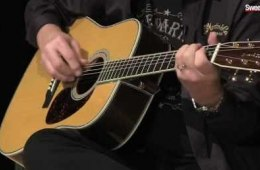 Martin Guitars Retro Series Demo and Overview