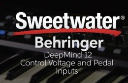 Behringer DeepMind 12 Control Voltage and Pedal Inputs