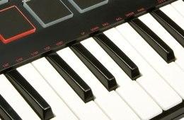 Akai Professional MPK Mini Compact 25-key Keyboard ...