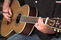 Washburn WP21SENS Acoustic-electric Guitar Demo by Sweetwater Sound