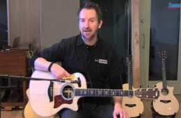 Taylor 814ce Grand Auditorium Acoustic-electric Guitar Demo