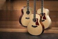 Taylor Grand Orchestra Guitars