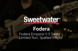 Fodera Emperor II 5 Select Limited Run Spalted Maple Bass Demo