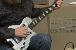 Traveler Guitar EG-1 Standard Sweetwater Exclusive Guitar Review by...