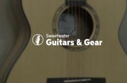 PRS SE Angelus Alex Lifeson Thinline Guitar Review by Sweetwater