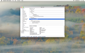 Mac System Information Menu with USB selected